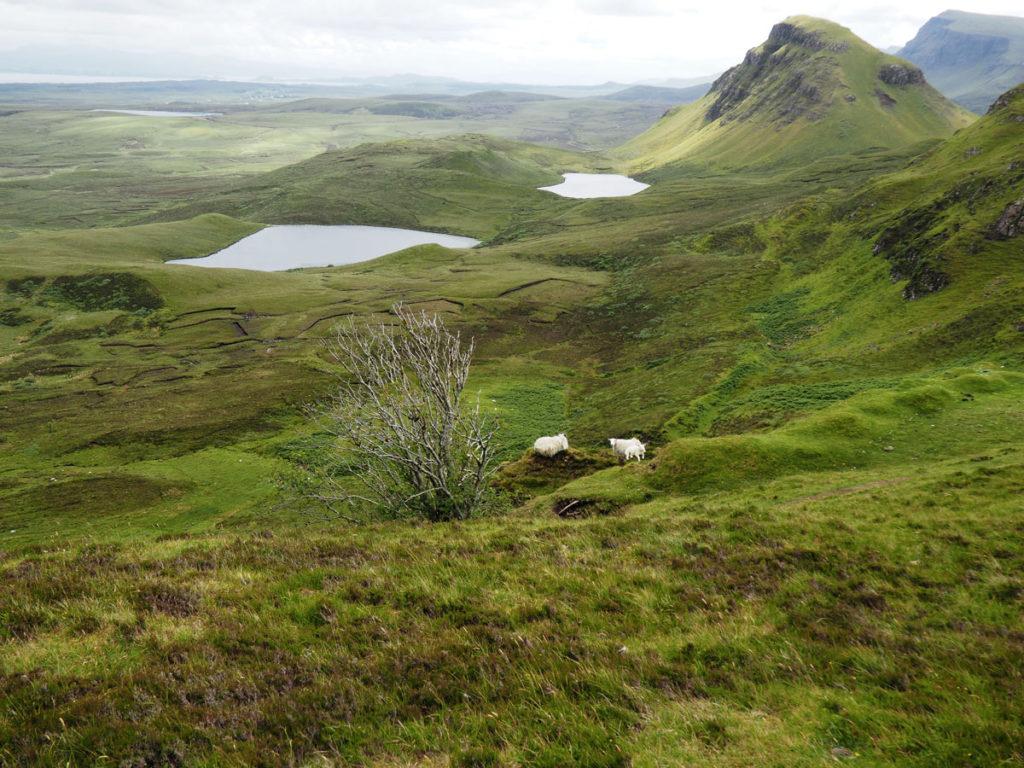 Road trip Scotland Isle of Skye Quiraing