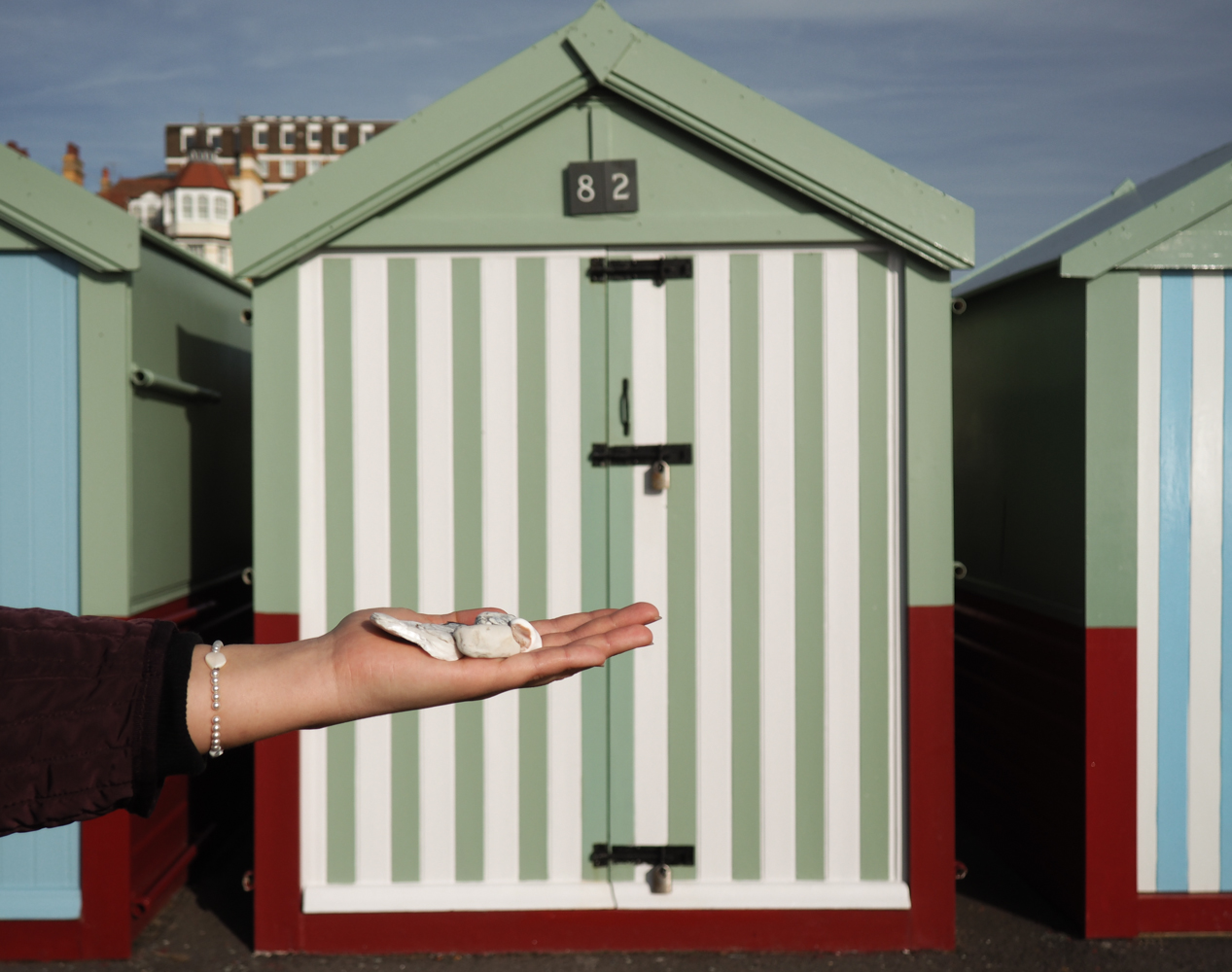 Hove Beach Huts Places to visit in Brighton