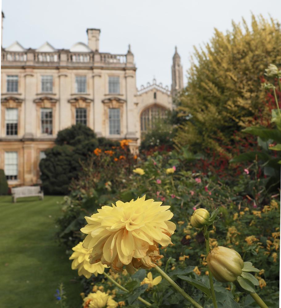 Clare College Scholars Garden