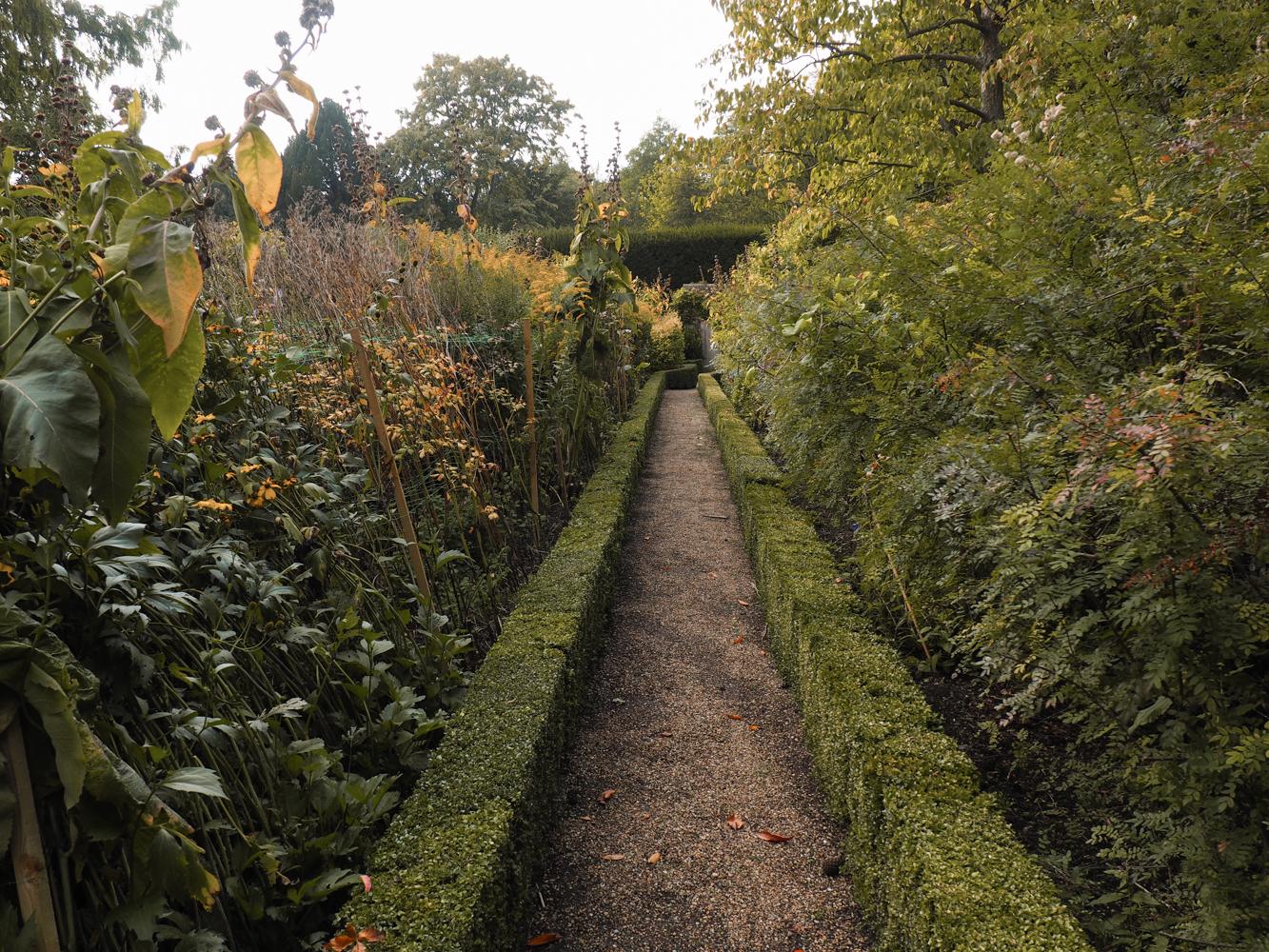 Clare College Garden
